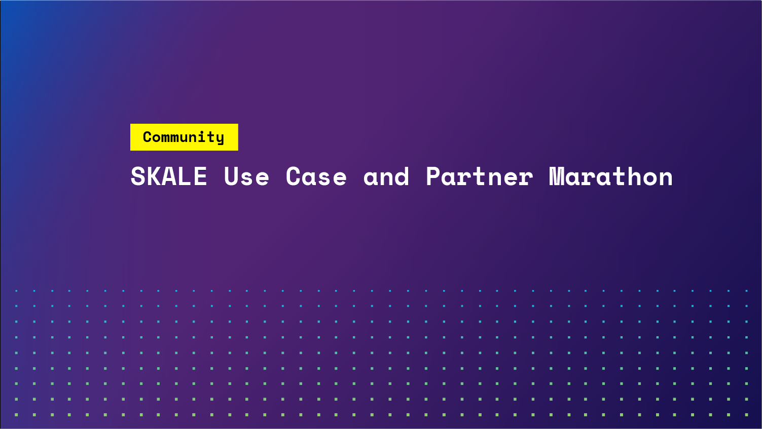 SKALE Use Case and Partner Marathon