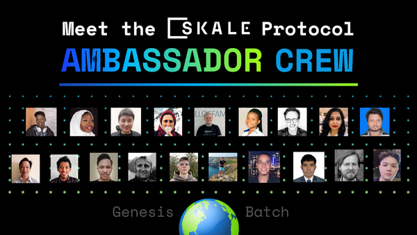 Meet the SKALE Protocol Ambassadors